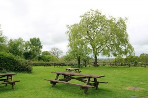 Our large garden has great views over Ashdown Forest
